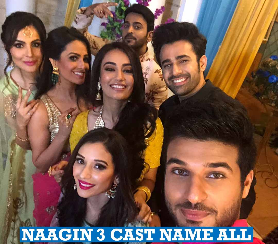 Naagin 3 Star Cast Real Name Colors Serial Story Plot (12) - Modern