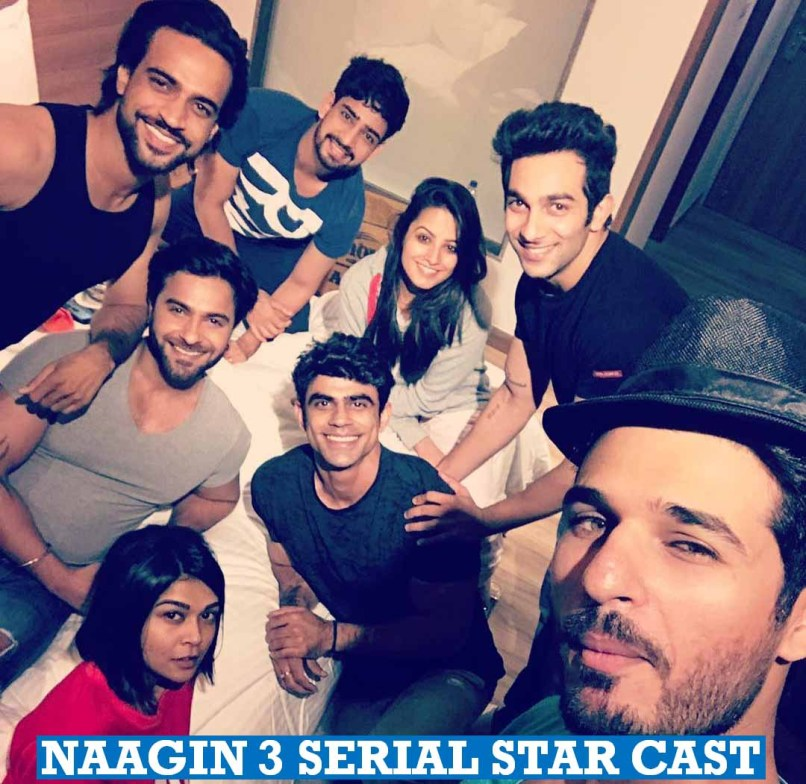 Color Tv Show Naagin 3 | mountainstyle co