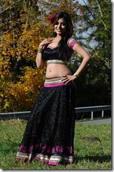 Nisha-Agarwal-Entertaining-Photo_navel_sexy