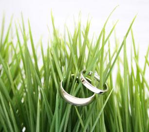 Green wedding cards