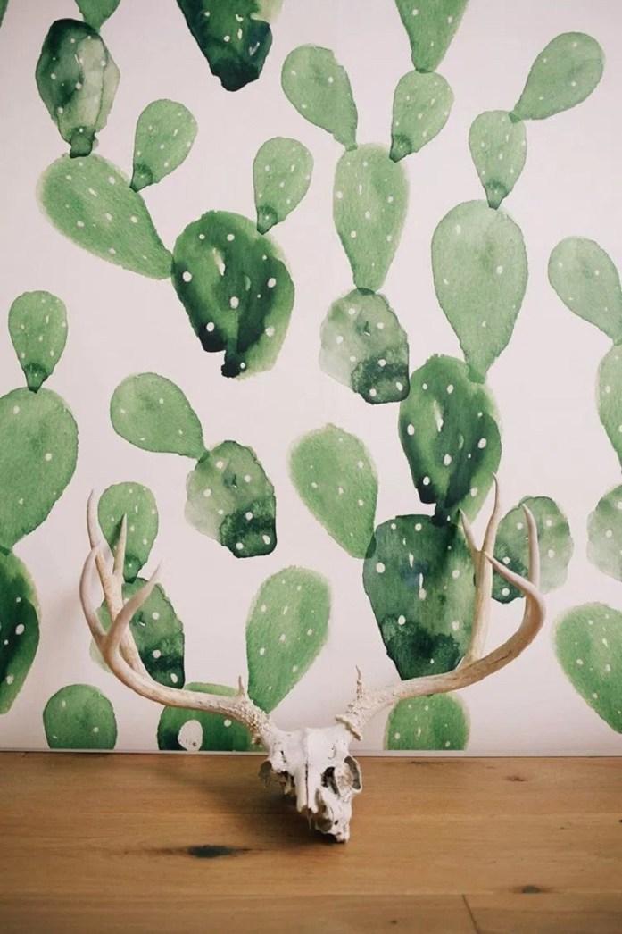 Cactus Backdrop