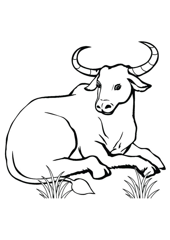 Coloring Pages Sitting Bull Coloring Page