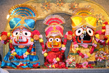 Fremont Temple celebrates Ratha Yatra with fanfare  India Post  India Post