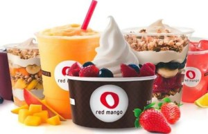 Frozen yogurt chain Red Mango reinvents India strategy, to open food outlets soon
