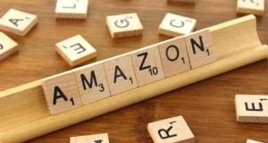 Currency Ban: Amazon experiences normal growth post short-term impact
