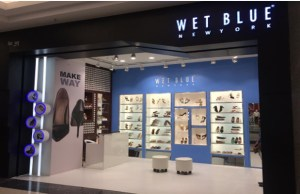 Footwear brand Wet Blue to open more EBOs this year, invest Rs 50 cr in expansion