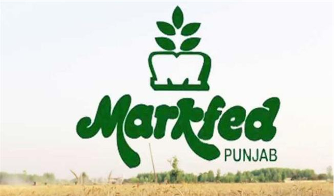 MARKFED, Punjab Various Vacancy Online Form 2021