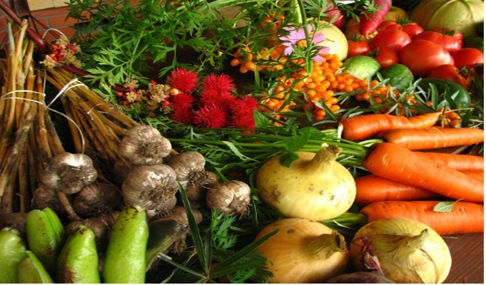 Foreign buyers keen on Indian organic products