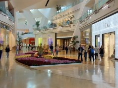 Indian luxury market poised to expand 5-fold in three years: Assocham