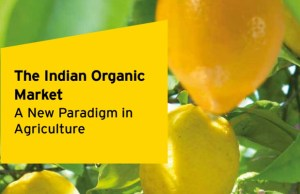 Organic packaged food market to cross 871 million by 2021: ASSOCHAM-EY Report