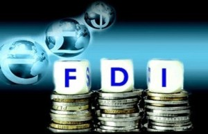 No proposal to change existing FDI policy in multi-brand retail trade: DIPP Secy