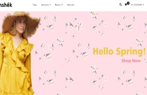 US online fashion retailer, Samshek Inc, gets Nair Ventures on board for India expansion