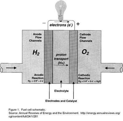 Diagram Of Nitrogen Fuel Cells Oxygen Hydrogen Fuel Cells An Eco Friendly