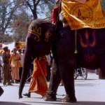 Kumbha elephant