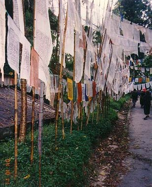 Sikkim-prayer flags