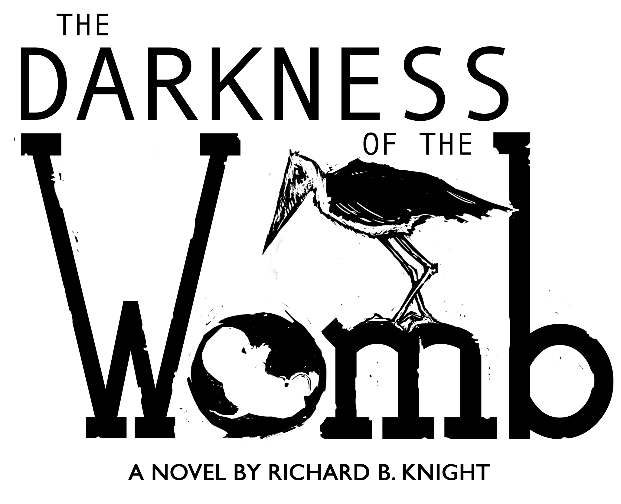 Interview with Richard B Knight, author of The Darkness of