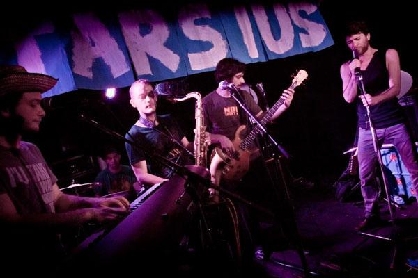Tarsius