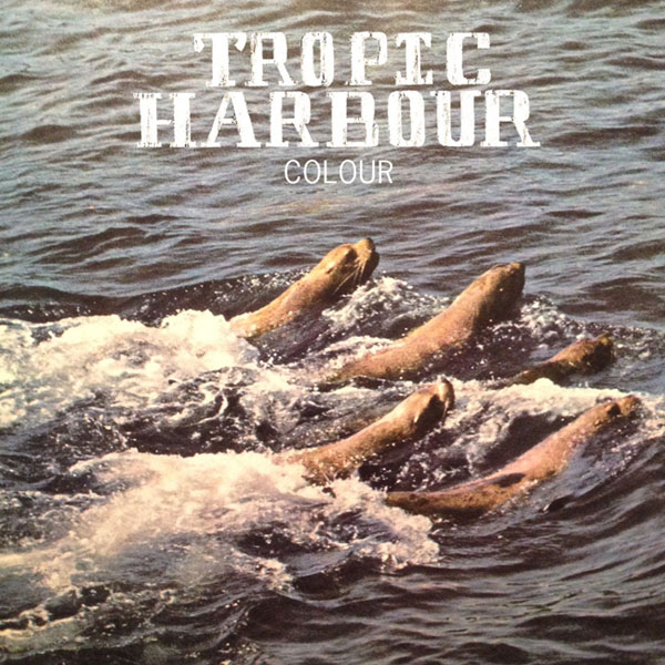 Tropic Harbour - Colour