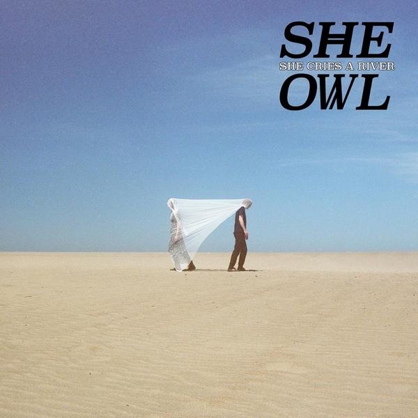 She Owl Drifters par Felicia Wong 600x600