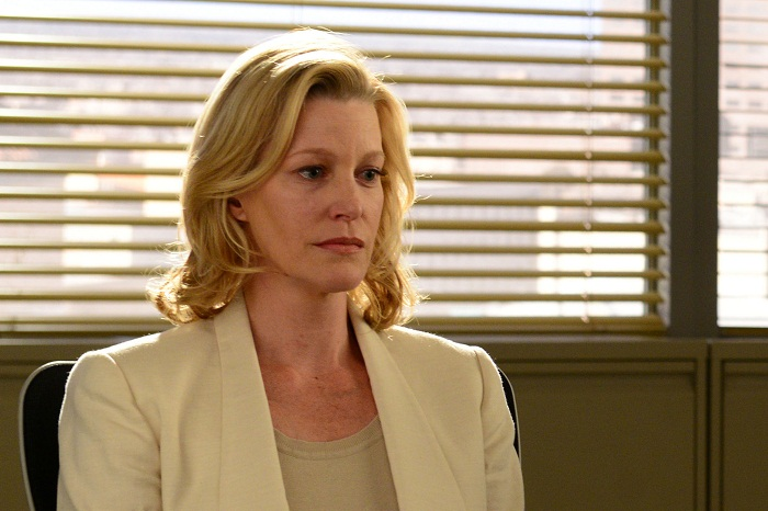 Image result for Skyler white