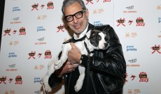 'Isle of Dogs' Star Jeff Goldblum: Wes Anderson's Stop-Animation Film Is an 'Anti-Bigotry' Project With a Message