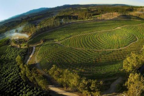The Biggest Little Farm recensie