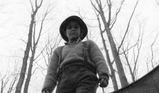 'The Painted Bird' Trailer: Witness Václav Marhoul's Brutal, Beautiful, and Punishing World War II Epic