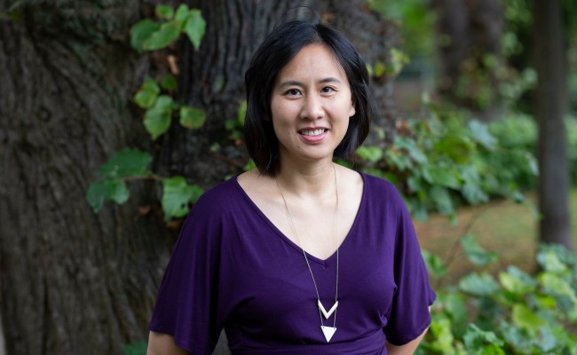 Little Fires Everywhere Celeste Ng On Goals For The