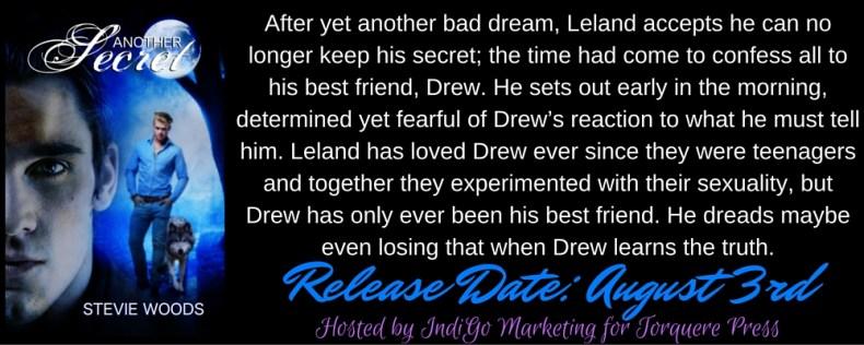 Another Secret Blurb Banner