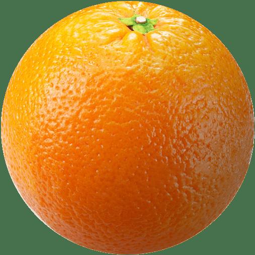 Ripe orange, great horticulture