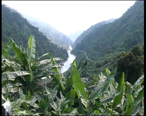 La giungla dell'Arunachal Pradesh