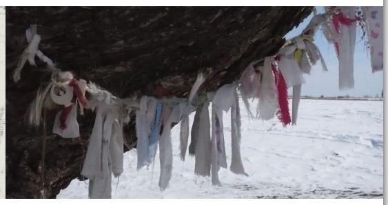 Paesaggi, Luoghi e Spazi Sacri nello Sciamanismo Siberiano