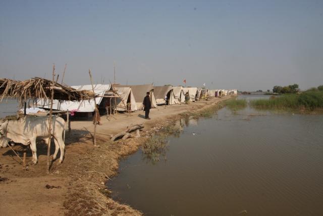 Campi profughi sorti dopo le alluvioni del Sindh, in Pakistan. Foto Emanuele Confortin (Archivio)