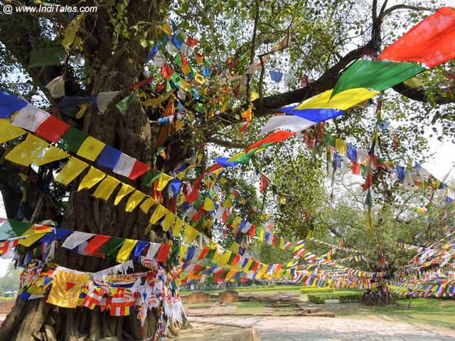 माया देवी मंदिर के आस पास रंग बिरंगे झंडे