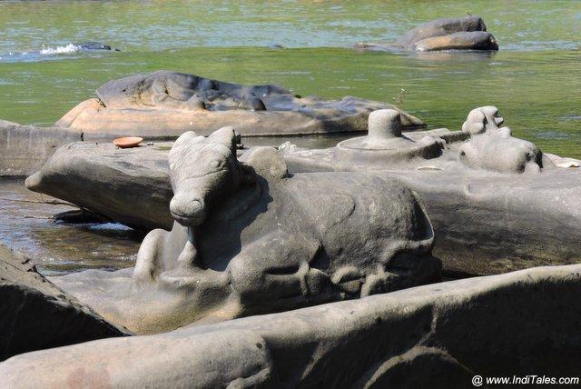 जहाँ शिव वहां उनका वहां नंदी - सहस्रलिंग - शाल्मला नदी