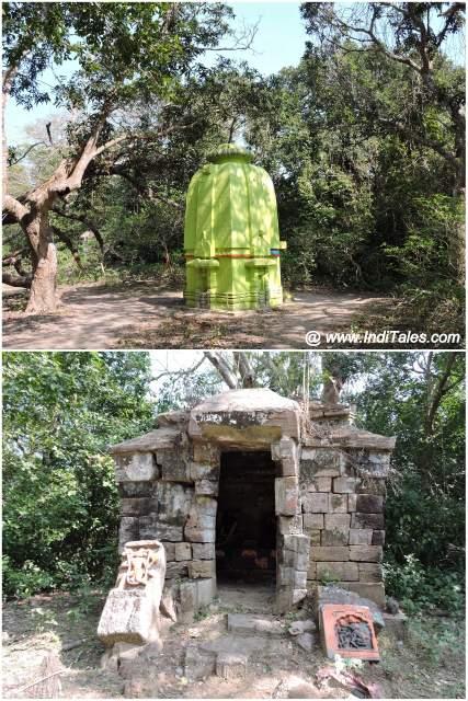 प्राचीन शिव एवं वन दुर्गा मंदिर - भितरकनिका