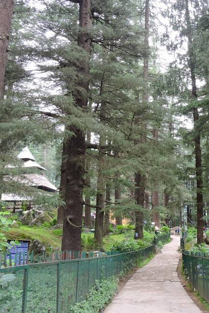 Hidimba Devi Temple – Adhishtri Devi in Dungri Van Vihar of Manali