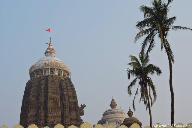 Neel Chakra on the summit of Jagannath Temple