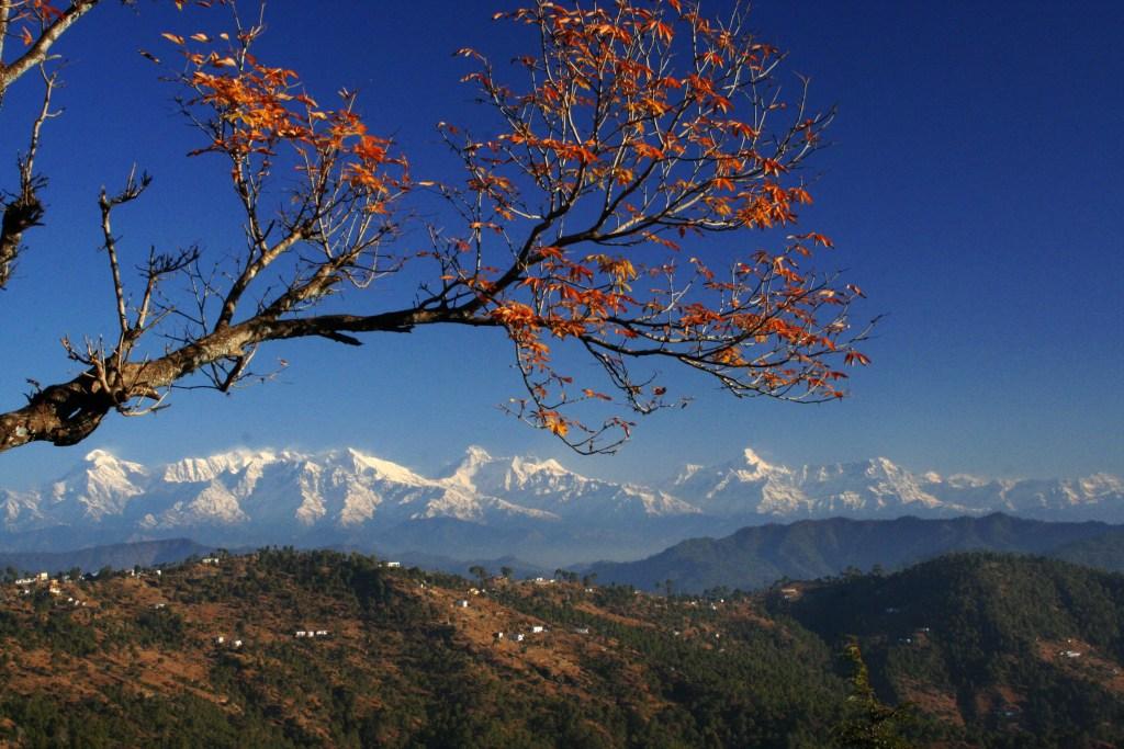 Almora Uttarakhand