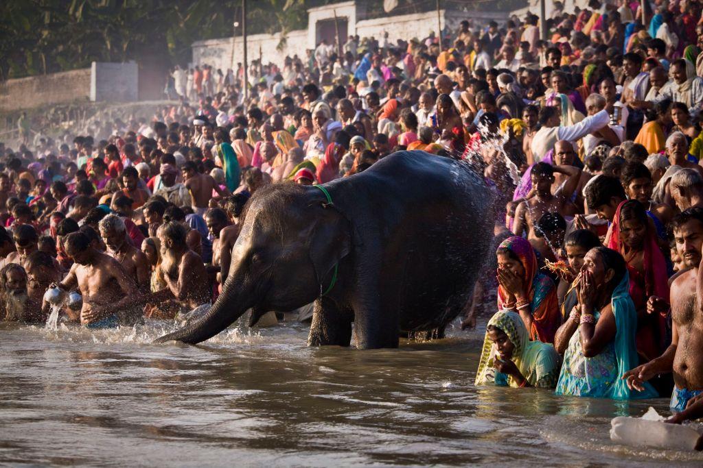 Sonepur Fair Bihar