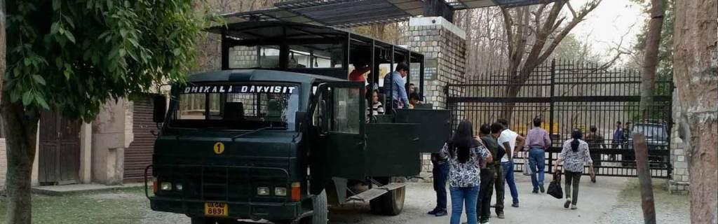 Bus safari jim corbett