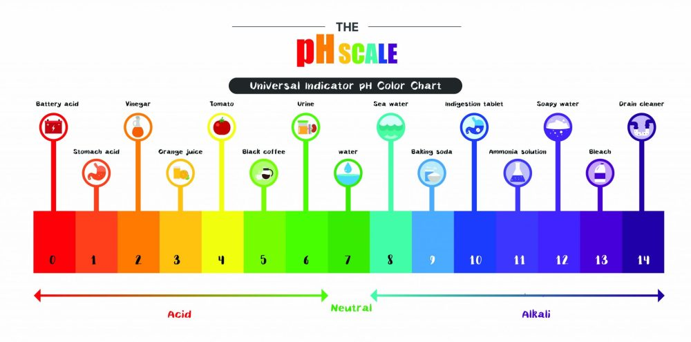 medium resolution of the ph scale universal indicator ph color chart diagram