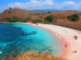 The-Marvelous-Pink-Beach-at-Labuan-Bajo-Pink-Beach-at-Flores