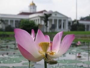 Istana Presiden Bogor Indonesia A-Z