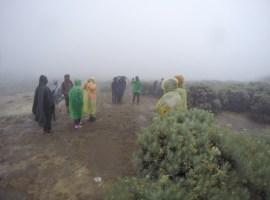 Paguci Trilogy : Papandayan The Land of Edelweiss