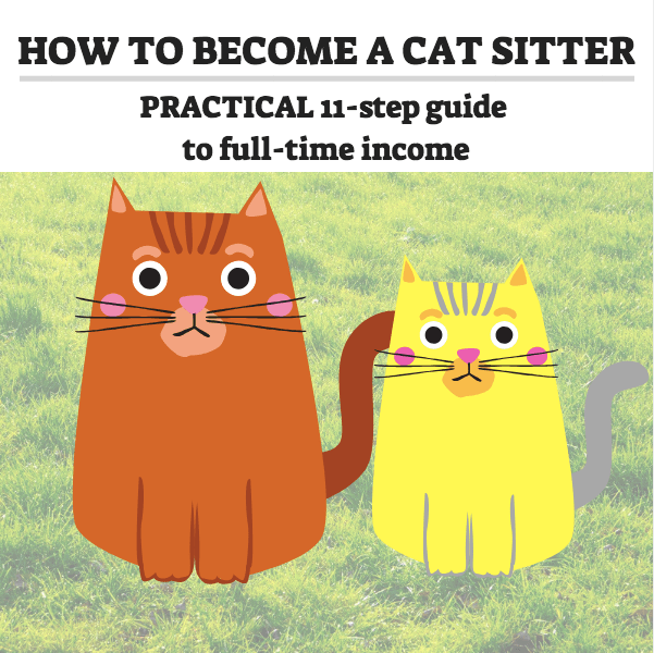 how to start a cat sitting business