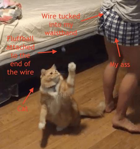 bored cat solutions diy