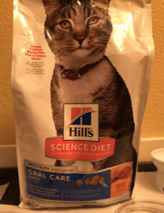 hills science dry cat food oral