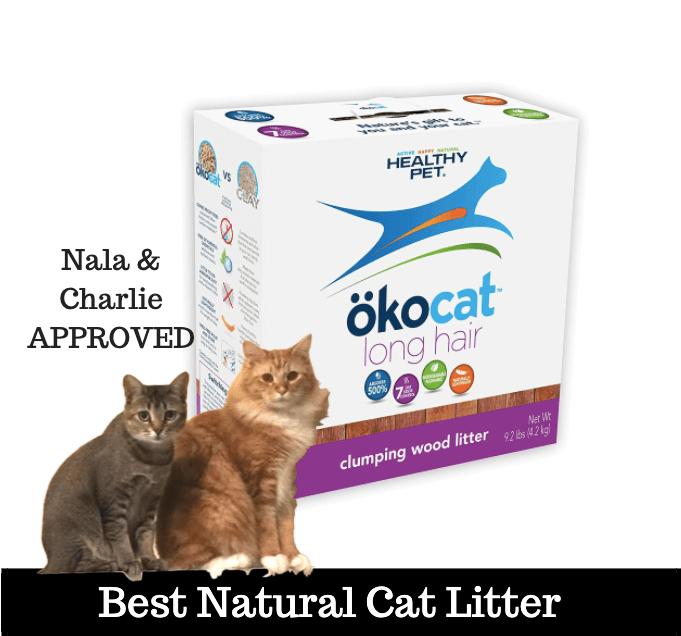 best cat litter no tracking