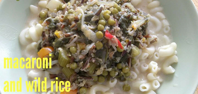 Macaroni and Wild Rice Soup